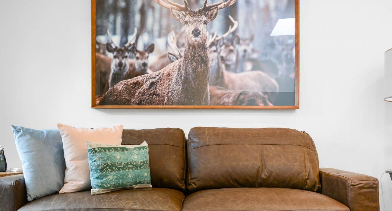 Carlton Terrace - Carlton - Living Area Couch