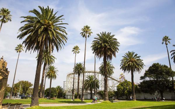 Albert Park - Catani Gardens