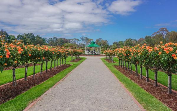 Werribee - Victorian Rose Garden